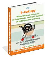 eBook - Wykorzystanie Internetu W Działalności Małych I średnich Przedsiębiorstw W Polsce